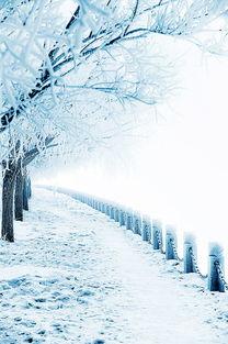 ...于冬天的诗句和成语