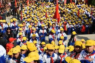 政府机关、林州慈善总会等单位也组织了相应的祭奠仪式)(  文/图)  ...