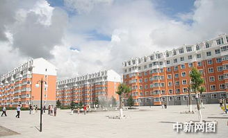走访齐齐哈尔棚改工程 4年将完成681.2万平方米