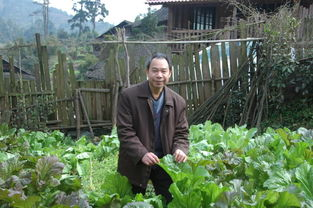 ...影者、苗族作家蒙玉祝在林洞村摘农家菜-林洞的芦笙同年