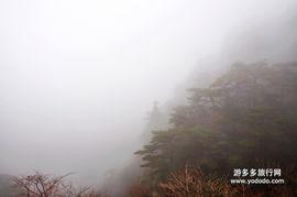 .... 黄山照片 山野闲人007的照片