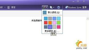 样自定义的配色系统,如同 Windows Live Messenger 一样,可以任意...
