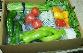 ...开抢,新鲜蔬菜免费送货上门