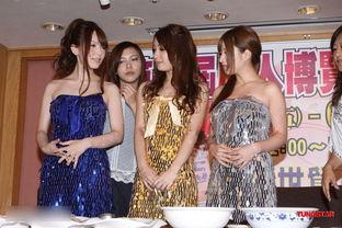 ...起举行的第二届台湾成人博览会.-AV女优集体赴中国淘金 花招尽出...