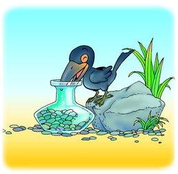 伊索寓言成真 乌鸦会投石喝瓶中水