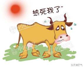 趣图说天气 民间有谚语称 早立秋凉飕飕,晚立秋热死牛
