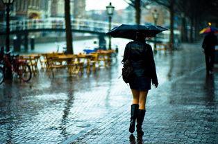 怀念雨中之歌