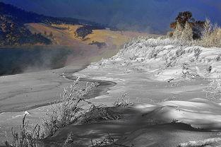 雾袅袅妆冬色,隔岸涛涛舟渡客)   雾淞岛的景致,无论是大观还是细...