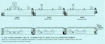 process flow: -DWT mesh belt dryer