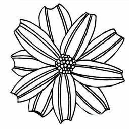 花朵简笔画教学