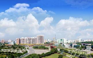 南邻漳州圆山新城,北邻长泰县,华安县.规划