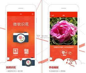 讲述关于花儿的小秘密,让你一秒变身识花达人!微软识花支持iOS系...
