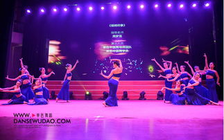 版纳印象舞蹈傣族舞-版纳印象舞蹈