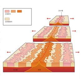 分分彩前三中三后三-地质学家综合各方面的证据提出了海洋扩张学说,并最终发展出板块构...