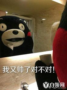 熊本熊表情包 熊本熊之考试吃货单身汪污王专用表情包大全