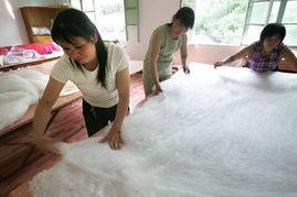 ...时节,刘正凤等留守妇女在合作社加工蚕丝被,赚取养蚕之外的务工...