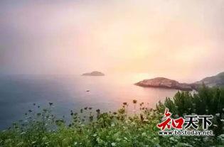 岛的诗和远方,其他都可以是将就... 花鸟岛位於嵊泗列岛的最北面,夏...