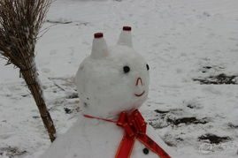 堆雪人随拍
