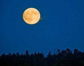 最起源-...最大满月(图片来源:Taylor S. Kennedy, National Geographic Stock...