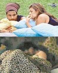 真人秀节目播出选手遭性侵画面惹争议 2012年1月,巴西版《老大哥...