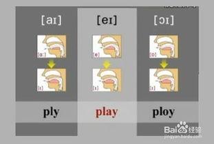 英语48个英语音标快速记忆法 五