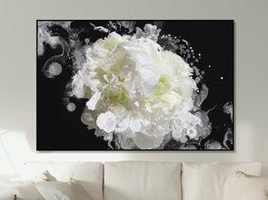 简约黑白元素白色花瓣花朵静物抽象装饰画