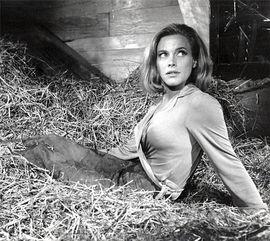 007最新小说 邦德最想做的是和邦女郎