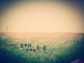 我不后悔我爱你,只怪我太晚遇见你