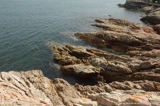 海边石 头图片