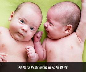 诗词内涵 郏姓双胞胎男孩好名字推荐