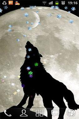 wolf狼-狼 wolf 动态壁纸 HD
