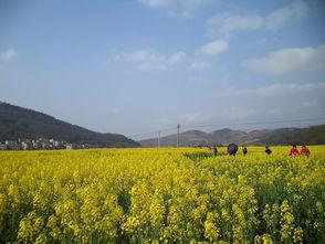农行隆回县支行扶持旅游产业扮靓美丽乡村