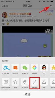 iphone 如何下载微博上的秒拍视频
