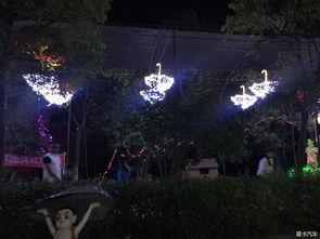 光的盛宴 湖光山舍灯光节