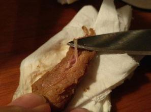 ...是静脉血管还是寄生虫,猪肉