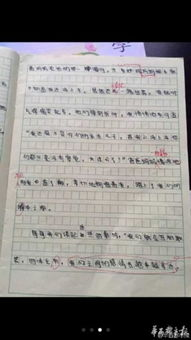 撸我-【小学生爆笑作文:爸妈撸完串忘接我 我还是不是亲儿子?】近日,成...