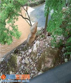 祁阳水电大桥开闸泄洪和浯溪公园观赏