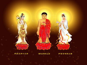 圣空无欲-念佛法门虽分实相念佛、观像念佛、观想念佛,和持名念佛四种.而实...