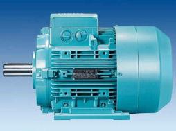 西门子1LG0 Low-voltage Motor1LG0低压交流异步电动机:[3]