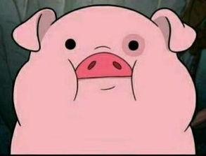 猪后腿肉做红烧狮子头