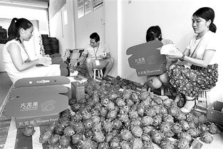 电商工作人员在打包本地特色农产品发送物流.-兴业形成电商产业扶...