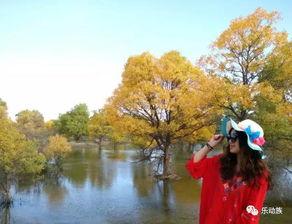 夏末秋初最适合旅游,这10个地方秋天最美