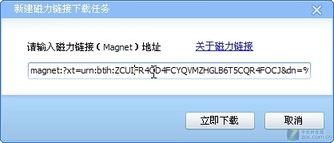 用好迅雷磁力链接 迎接BT下载2.0时代