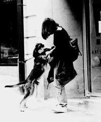 有女人和狗操逼的视频吗-依依惜别