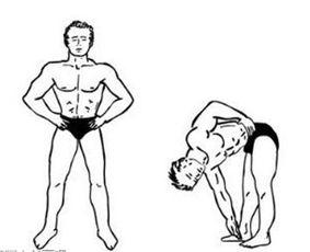 睡前长高拉伸运动 拉伸运动图解