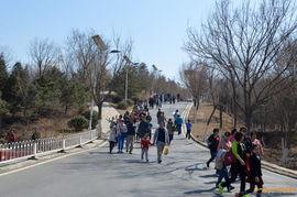 北宫森林公园活动 合影 海量图片 作业 作业游记 风云单车网 自行车论...