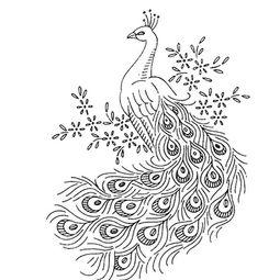 关于美丽的孔雀简笔画图片,美丽的孔雀图片,怎么画孔雀的简笔画...