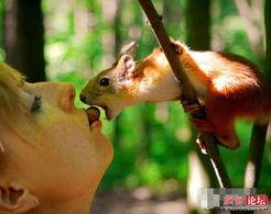 全球最有爱的人与动物亲密瞬间