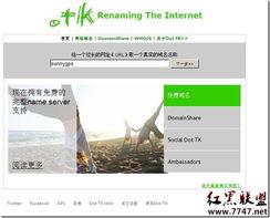 如何申请和解析tk域名简单教程