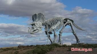 发现恐龙化石和恐龙蛋化石的地方;早在上世纪20年代,举世瞩目的中...